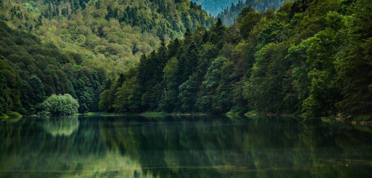 Черногория , 1
