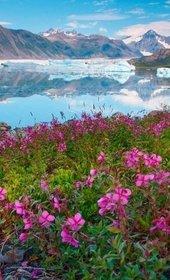 Аляска+ США