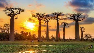 Африка, 5
