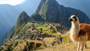 Латинская Америка и Карибы, 31