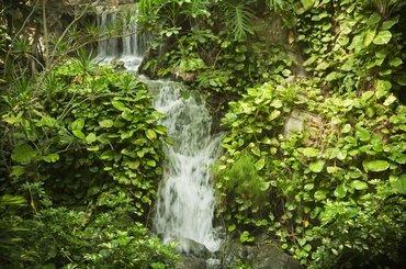 Испания Jardines De Nivaria