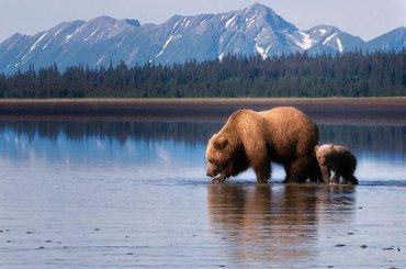 Канада + круиз по Аляске, 81