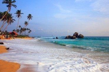 Шри-Ланка: Сигирия 1 ночь/2 дня, 84