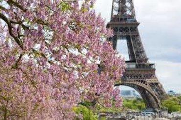 Париж - эконом , 82