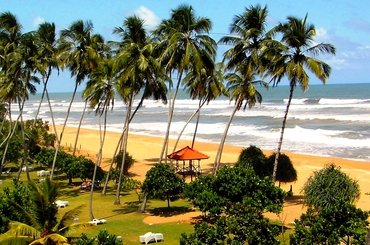 Шри-Ланка: Канди 1 ночь/2 дня, 83