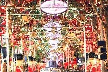 Новогодняя сказка в Стамбуле (без авиа), 84