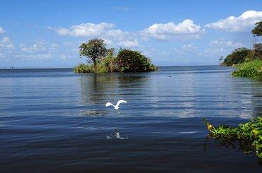 Приключение в Коста-Рике и Накарагуа, 85