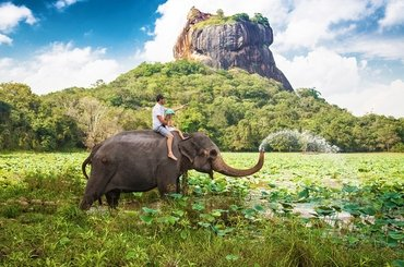 Экскурсионный тур на Шри-Ланку:5 дней/4 ночи , 92