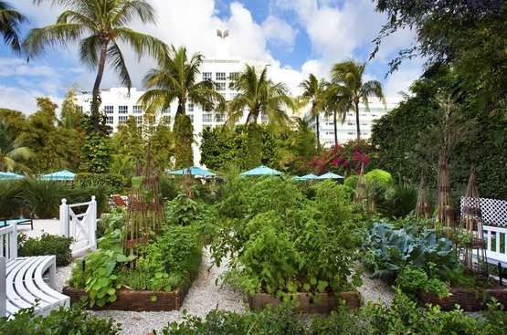 США The Palms Hotel & Spa
