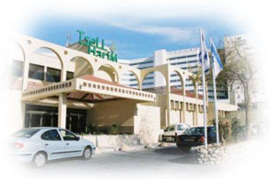 Израиль Tsell Harim Hotel