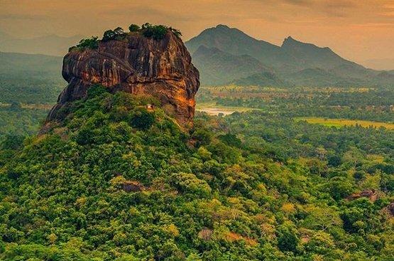 Мечта о Шри-Ланке (4 ночи), 113