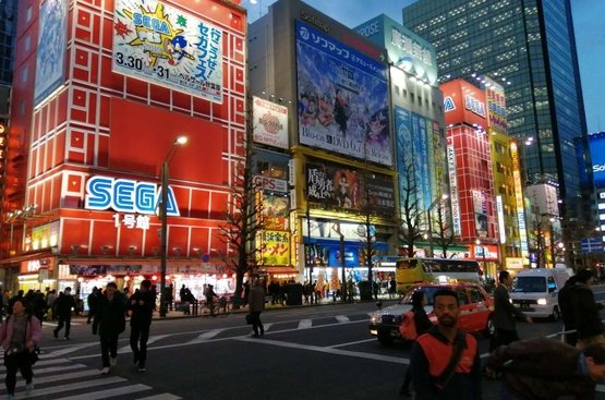 ЯПОНИЯ: Токио+ Одайба + Никко: индивидуальный тур по групповой цене, 113