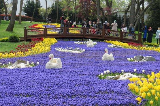 Фестиваль тюльпанов в Стамбуле, 113