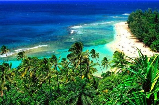 От океана до океана + пляжи Майами, 112