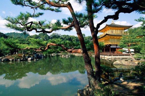 Япония: Токио-Одайба-Никко-Киото (Нара / Арасияма), 84