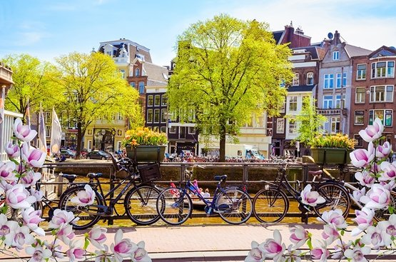 Амстердам - Брюссель, 84
