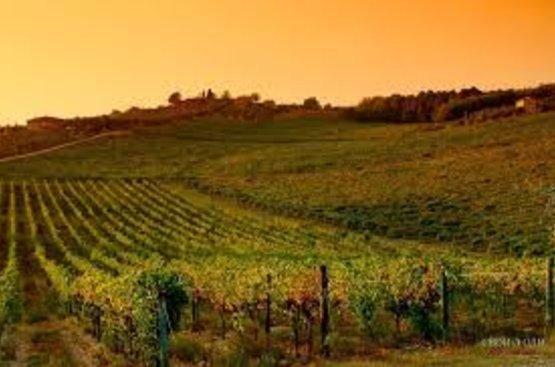 Вина и деликатесы Тосканы и Чинкве Терре, 88