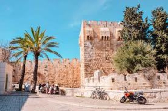 Доступный Израиль (Нетания) -каждый день, 86