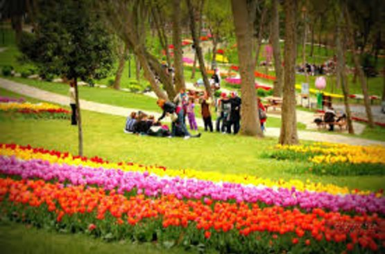 Османские султаны и их тюльпаны, 115
