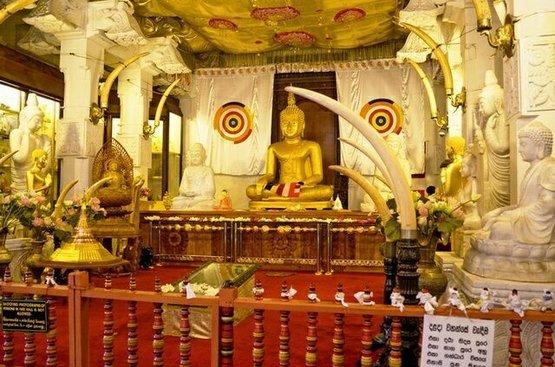 Мечта о Шри-Ланке (4 ночи), 127
