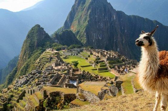 Манящий Перу Икитос , 84