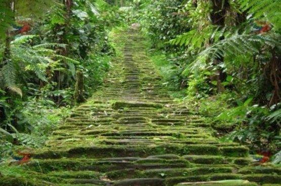 Колумбия. В поисках Эльдорадо, 112