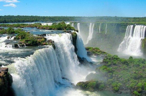 Тропическая Бразилия 2020, 88