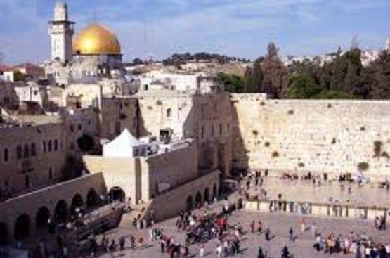 Доступный Израиль (Нетания) -каждый день, 89