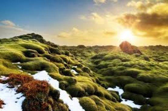 Тур в Исландию на 4 дня. Исландия в Миниатюре, 106