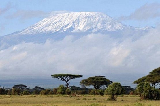 Восхождение на Килиманджаро, 116