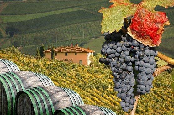 Вина и деликатесы Тосканы и Чинкве Терре, 87