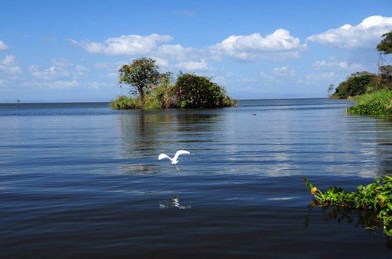 Приключение в Коста-Рике и Накарагуа, 86