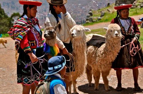 Весь Перу, 113