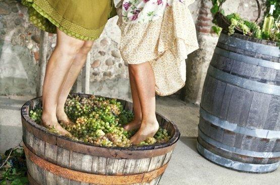 В Грузию на сбор винограда, 113