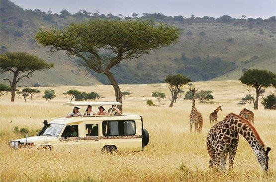 Сафари в Танзании, 112