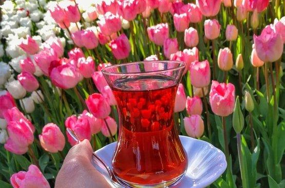 Фестиваль тюльпанов в Стамбуле, 112