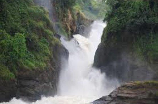 Путешествие по Уганде и Руанде (11 дней), 117