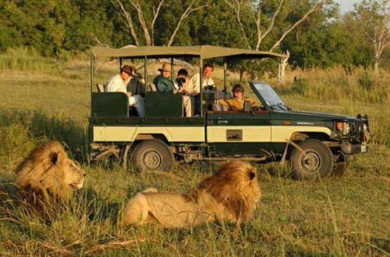 Сафари в Танзании (6 дн) : Тарангире, Кратер Нгоронгоро и Серенгети, 91