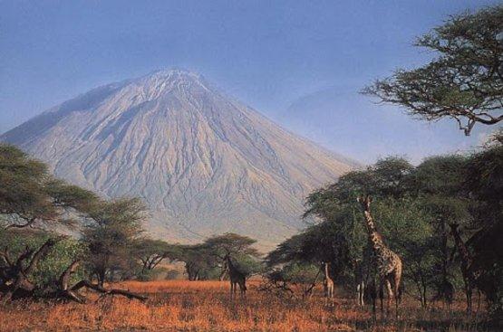 Сафари в Танзании (4 дн): озеро Маньяра и Кратер Нгоронгиро, 87
