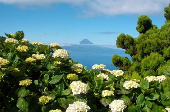 ПОРТУГАЛИЯ: Азорские острова (3 острова), 89