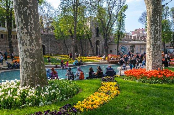 Османские султаны и их тюльпаны, 86